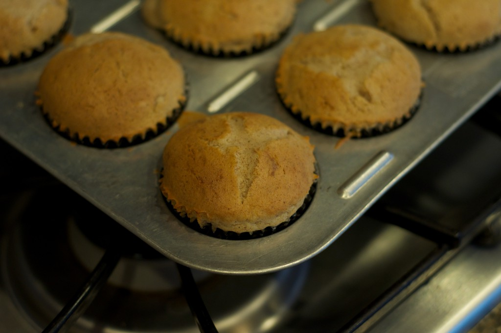 Snickerdoodle Cupcakes 1